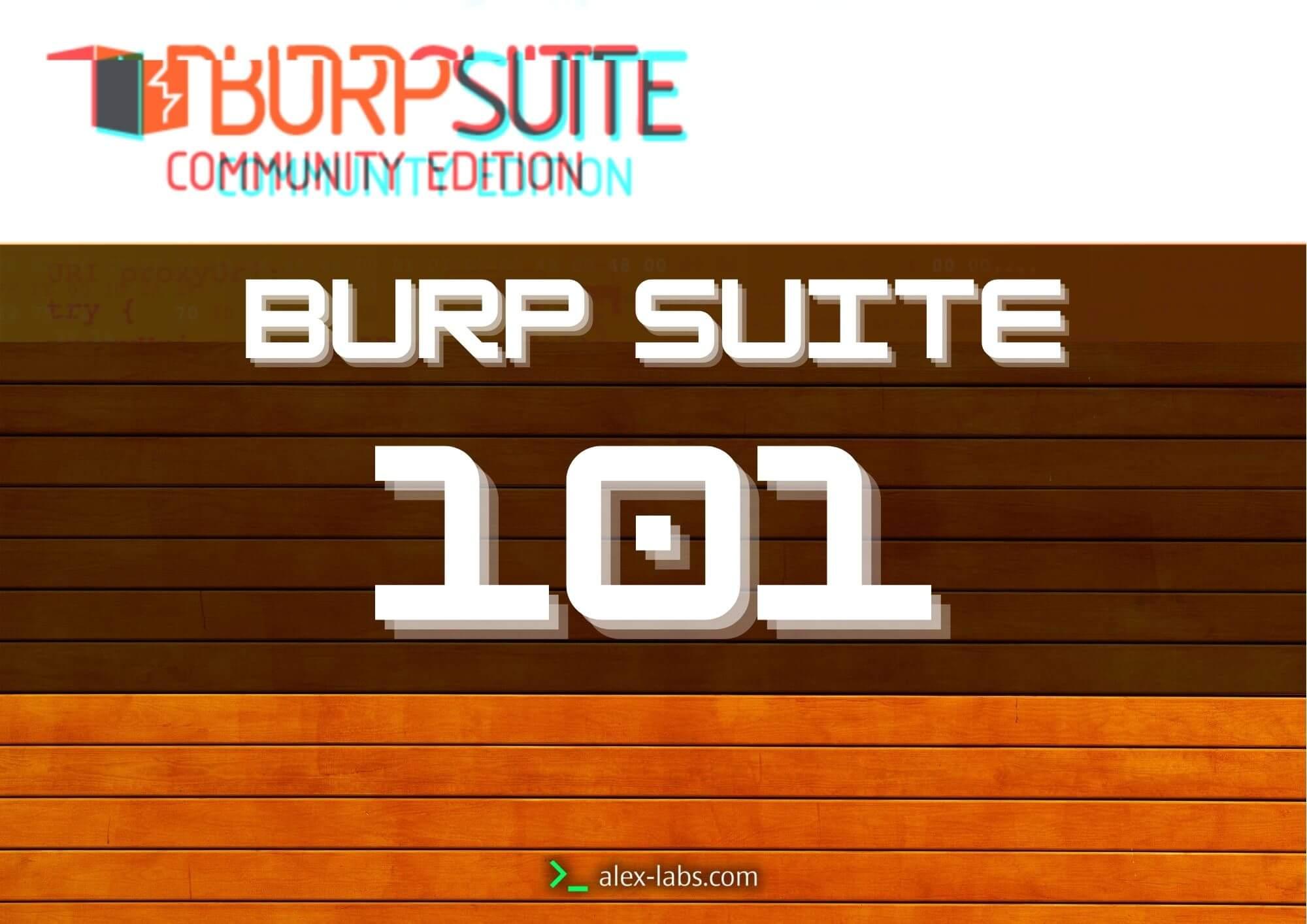 Burp Suite Community Introduction